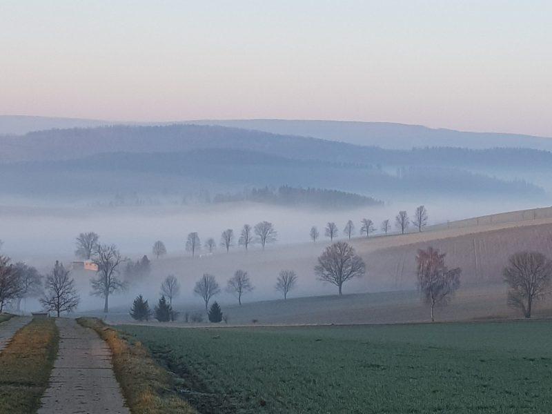 Oberdittersbach März 2020